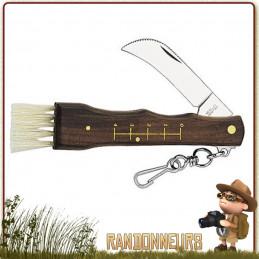 Couteau à champignons avec manche bois Palissandre, lame spéciale courbée en inox, brosse et réglette gravée