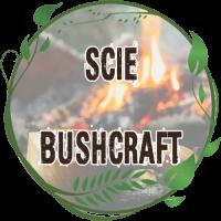 Scie Bushcraft